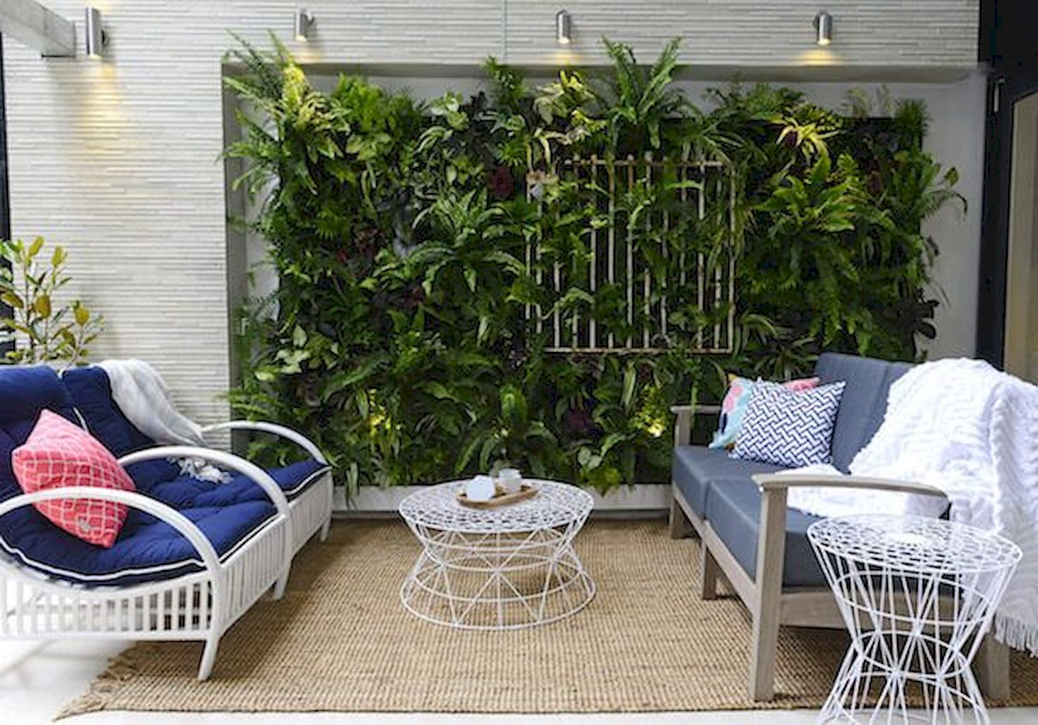 Best Indoor Plants for Tropical Home Decoration Part 28