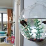 Creative Wall Auarium designs For Home Decoration and Amazing Room Separator Part 25