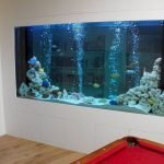 Exotic Wall Mounted Aquarium Giving Better Mood Everyday Part 42