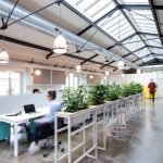 Modern Office Design with Healthy Natural Ideas That Increases Productivity Part 6