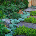 Natural garden walk ways from large stones and flagged stones Part 23