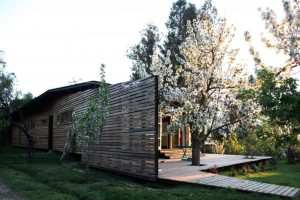 Wooden house design that embraces the nature surrounded by prosperous environment and fruit trees Casa Lo Cañas (2)